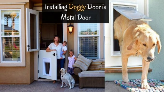 installing doggy door in metal door