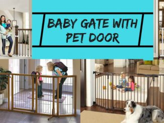 Baby Gate with Pet Door