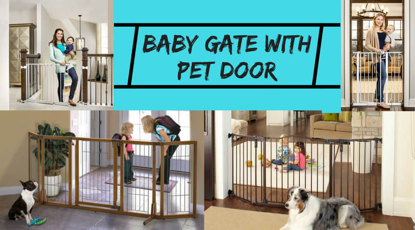 Photo of Best Baby Gate with Pet Door: Safety Gate Reviews