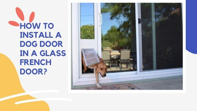 How to Install a Dog Door in a Glass French Door